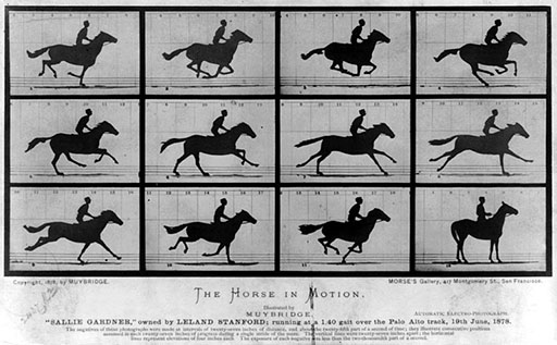 muybridges-the-horse-in-motion-1878